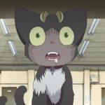 12 migliori gatti di Anime di tutti i tempi qz7daM 1 19